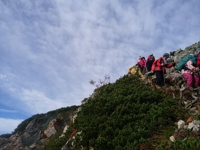 画像6: 【山旅会・登山ガイドこだわりツアー】岡田ガイドからの便り・唐松岳ツアーの2回目にいってまいりました!(その2)
