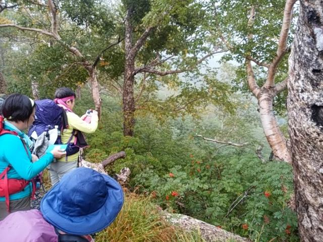 画像12: 【山旅会・登山ガイドこだわりツアー】岡田ガイドからの便り・唐松岳ツアーの2回目にいってまいりました!(その2)