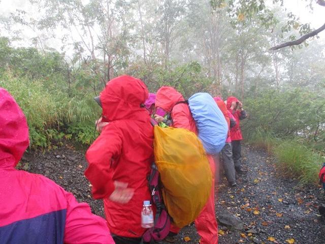 画像6: 【山旅会・登山ガイドこだわりツアー】岡田ガイドからの便り・唐松岳ツアーの2回目にいってまいりました!(その1)