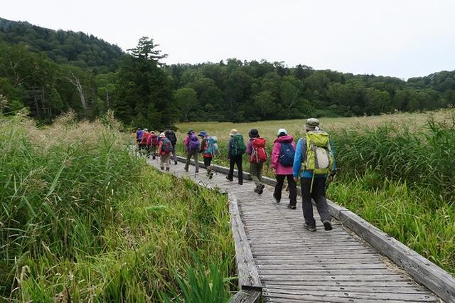 画像1: 【山旅会・登山ガイドこだわりツアー】岡田ガイドからの便り・尾瀬上田代にいってまいりました!
