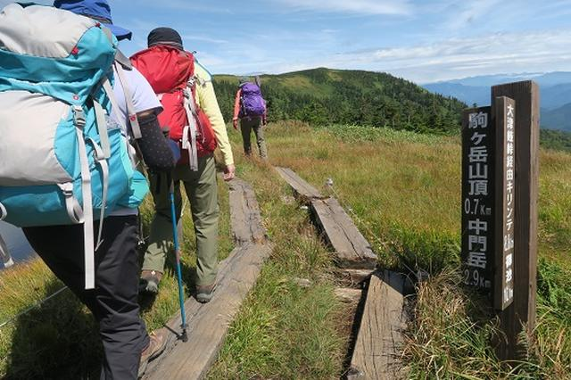 画像5: 【山旅会・登山ガイドこだわりツアー】岡田ガイドからの便り・会津駒ヶ岳にいってまいりました!(その1)