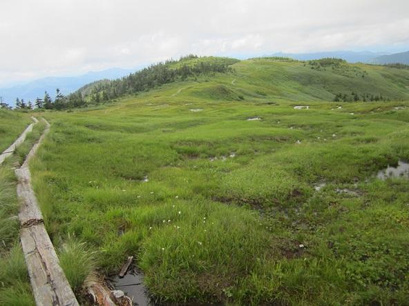 画像7: 【山旅会・登山ガイドこだわりツアー】岡田ガイドからの便り・会津駒ヶ岳にいってまいりました!(その1)