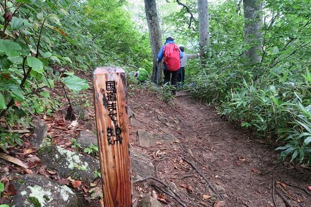画像9: 【山旅会・登山ガイドこだわりツアー】岡田ガイドからの便り・会津駒ヶ岳にいってまいりました!(その2)