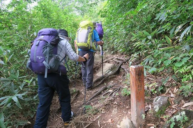 画像1: 【山旅会・登山ガイドこだわりツアー】岡田ガイドからの便り・会津駒ヶ岳にいってまいりました!(その1)