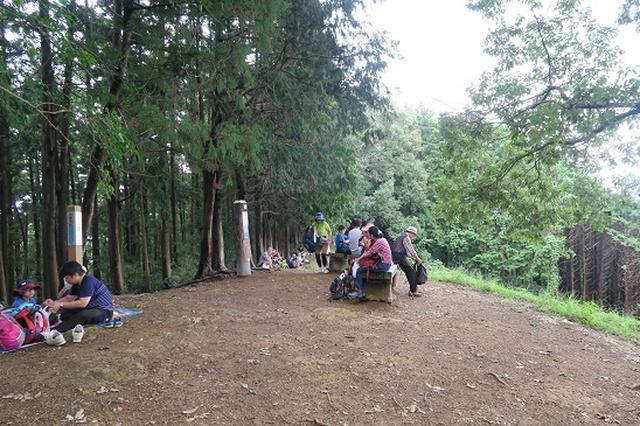 画像9: 【山旅会・登山ガイドこだわりツアー】岡田ガイドからの便り・巾着田から日和田山に下見にいってまいりました!