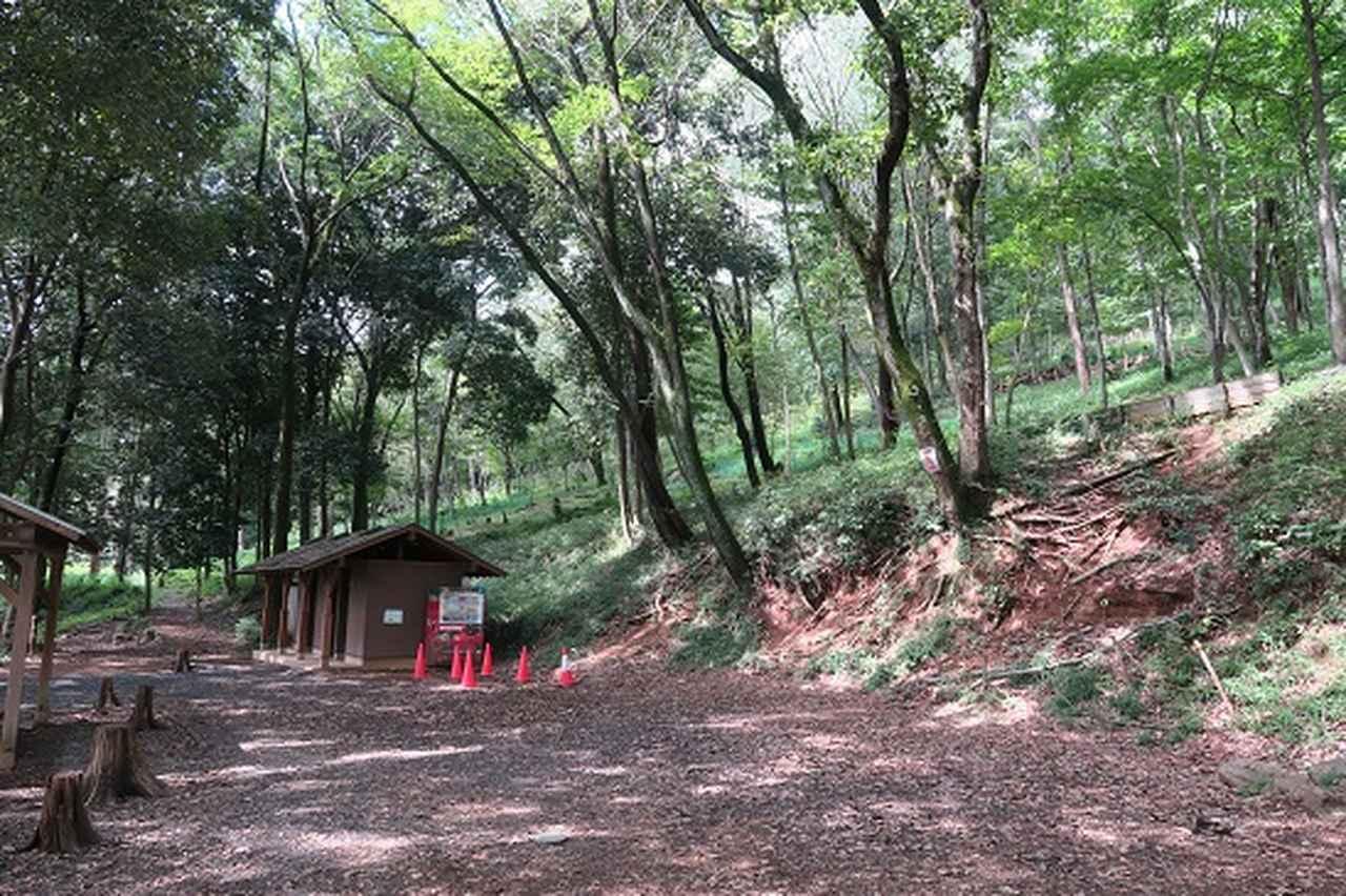 画像7: 【山旅会・登山ガイドこだわりツアー】岡田ガイドからの便り・巾着田から日和田山に下見にいってまいりました!