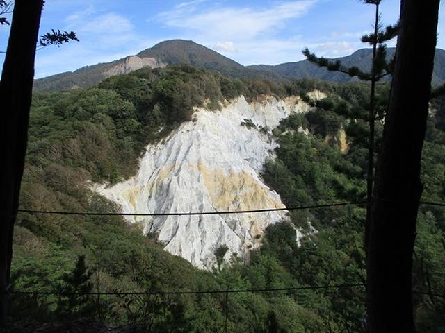 画像9: 【山旅会・登山ガイドこだわりツアー】岡田ガイドからの便り・白神山地 十二湖に下見にいってまいりました!