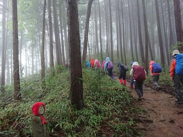 画像4: 【山旅会・登山ガイドこだわりツアー】添乗員からの便り・城山から景信山ツアーにいってまいりました!