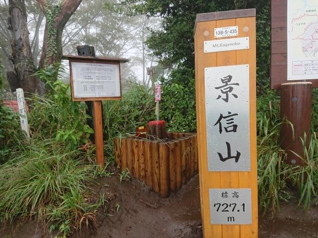 画像10: 【山旅会・登山ガイドこだわりツアー】添乗員からの便り・城山から景信山ツアーにいってまいりました!