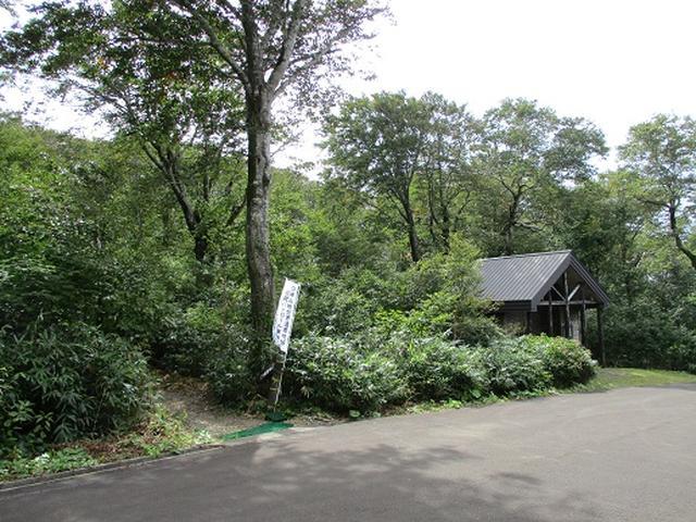 画像1: 【山旅会・登山ガイドこだわりツアー】岡田ガイドからの便り・白神山地・二ツ森に下見にいってまいりました!