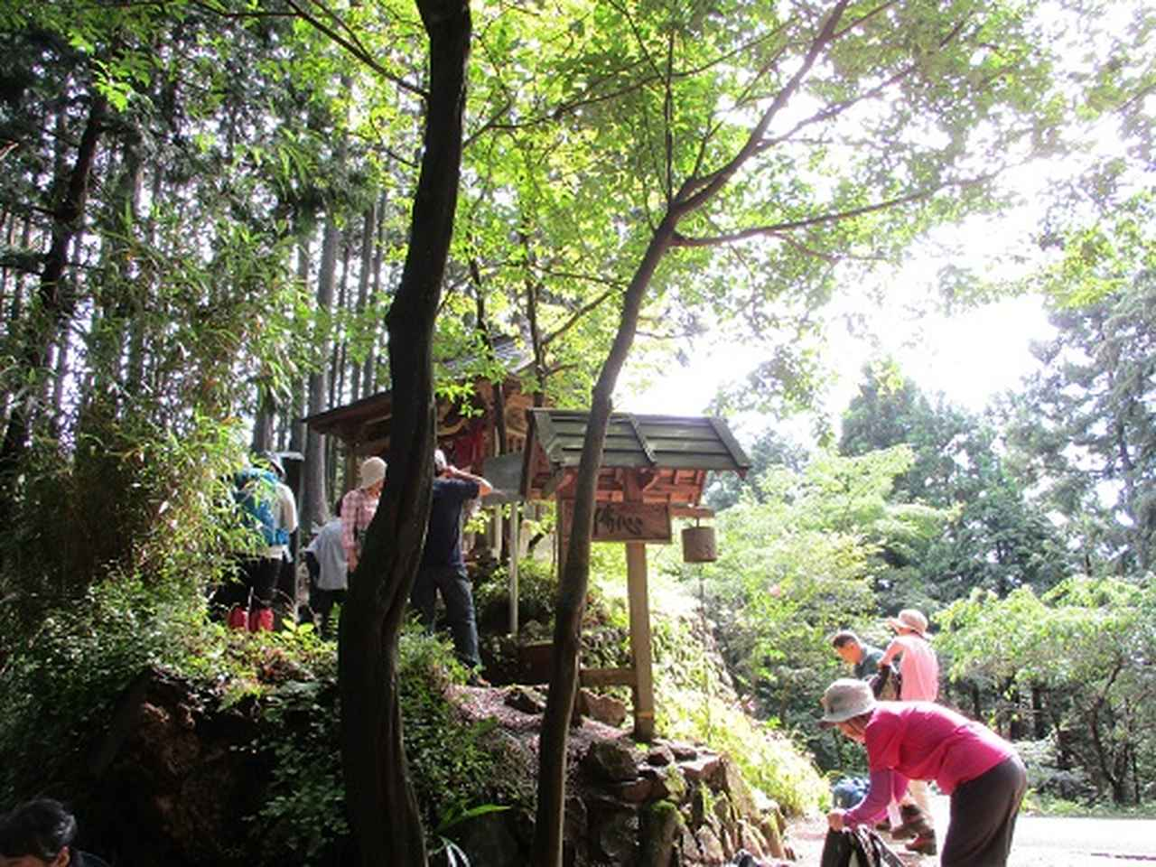 画像9: 【山旅会・登山ガイドこだわりツアー】岡田ガイドからの便り・巾着田から日和田山ツアーにいってまいりました!