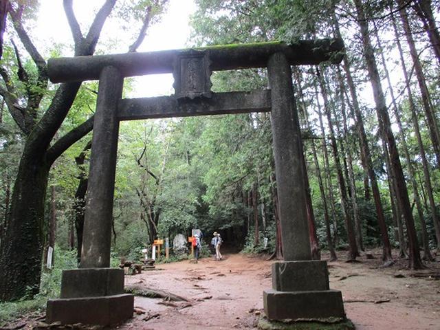 画像3: 【山旅会・登山ガイドこだわりツアー】岡田ガイドからの便り・巾着田から日和田山ツアーにいってまいりました!