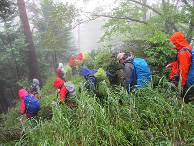 画像8: 【山旅会・登山ガイドこだわりツアー】岡田ガイドからの便り・茅ヶ岳ツアーにいってまいりました!