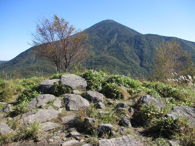 画像7: 【山旅会・登山ガイドこだわりツアー】岡田ガイドからの便り・八子ヶ峰ツアーの下見にいってまいりました!