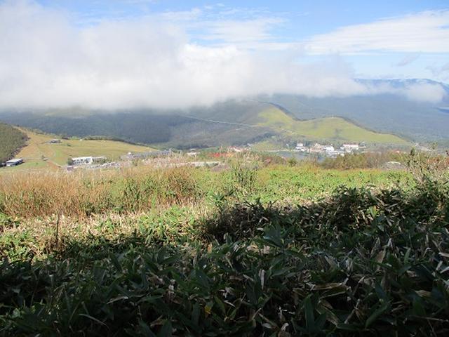 画像9: 【山旅会・登山ガイドこだわりツアー】岡田ガイドからの便り・八子ヶ峰ツアーの下見にいってまいりました!