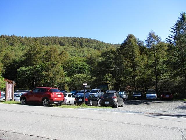 画像1: 【山旅会・登山ガイドこだわりツアー】岡田ガイドからの便り・八子ヶ峰ツアーの下見にいってまいりました!