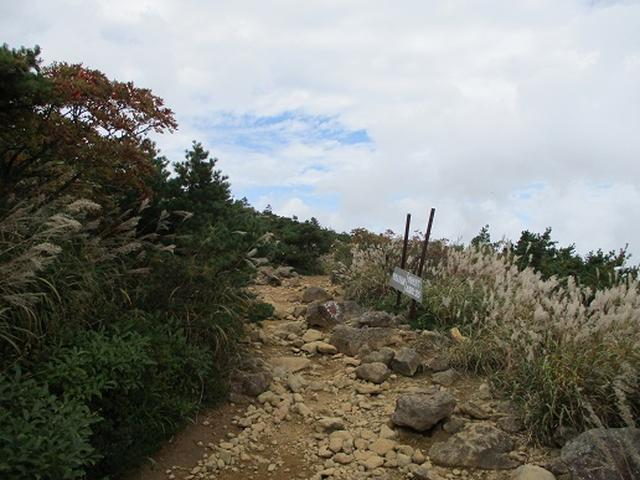 画像5: 【山旅会・登山ガイドこだわりツアー】岡田ガイドからの便り・安達太良山・栗駒山ツアーにいってまいりました!(その1)