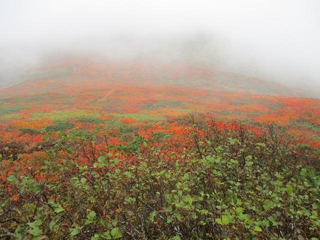 画像3: 【山旅会・登山ガイドこだわりツアー】岡田ガイドからの便り・安達太良山・栗駒山ツアーにいってまいりました!(その3)