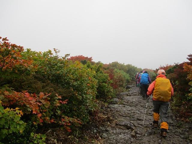 画像6: 【山旅会・登山ガイドこだわりツアー】岡田ガイドからの便り・安達太良山・栗駒山ツアーにいってまいりました!(その2)