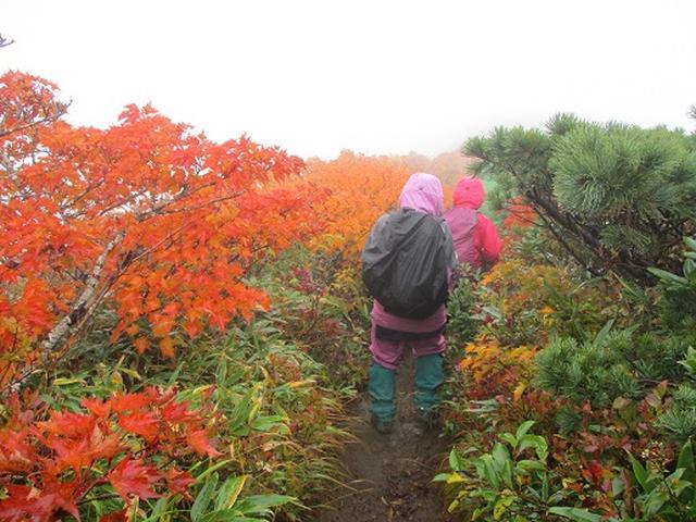 画像2: 【山旅会・登山ガイドこだわりツアー】岡田ガイドからの便り・安達太良山・栗駒山ツアーにいってまいりました!(その3)