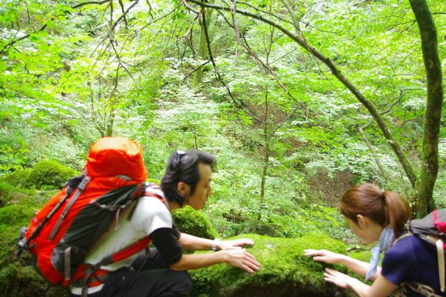 画像: 苔にタッチ!水分をたくさん含んでいるので、じゅわーっとしました。