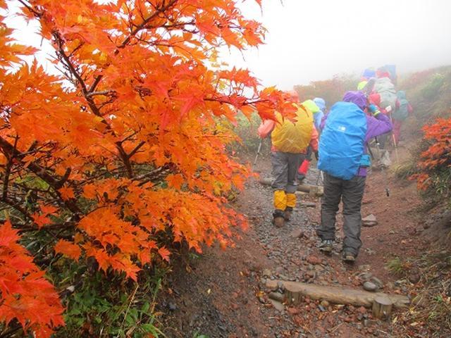 画像8: 【山旅会・登山ガイドこだわりツアー】岡田ガイドからの便り・安達太良山・栗駒山ツアーにいってまいりました!(その2)