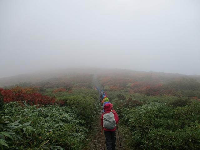 画像7: 【山旅会・登山ガイドこだわりツアー】岡田ガイドからの便り・安達太良山・栗駒山ツアーにいってまいりました!(その2)