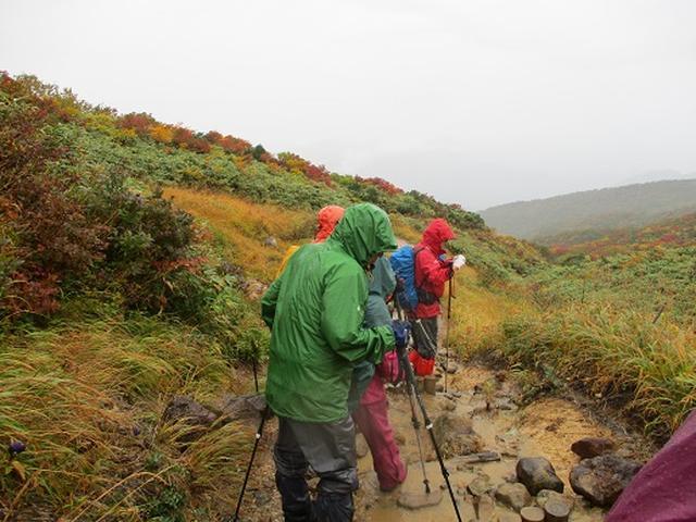 画像7: 【山旅会・登山ガイドこだわりツアー】岡田ガイドからの便り・安達太良山・栗駒山ツアーにいってまいりました!(その3)