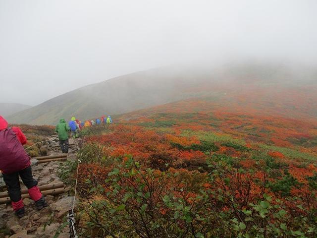 画像4: 【山旅会・登山ガイドこだわりツアー】岡田ガイドからの便り・安達太良山・栗駒山ツアーにいってまいりました!(その3)
