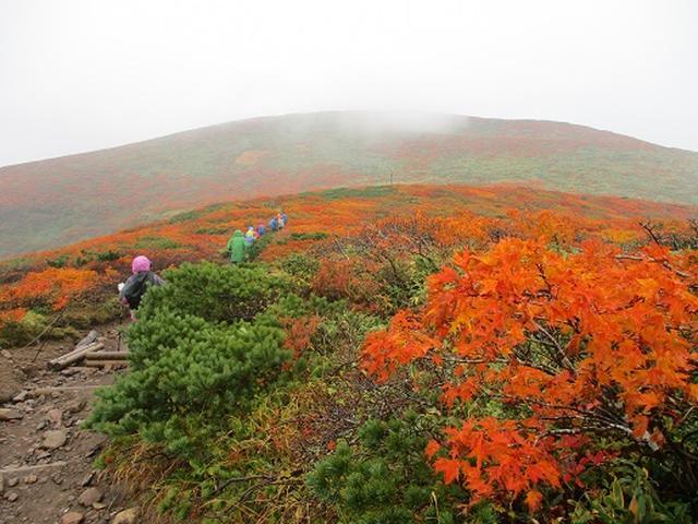 画像5: 【山旅会・登山ガイドこだわりツアー】岡田ガイドからの便り・安達太良山・栗駒山ツアーにいってまいりました!(その3)