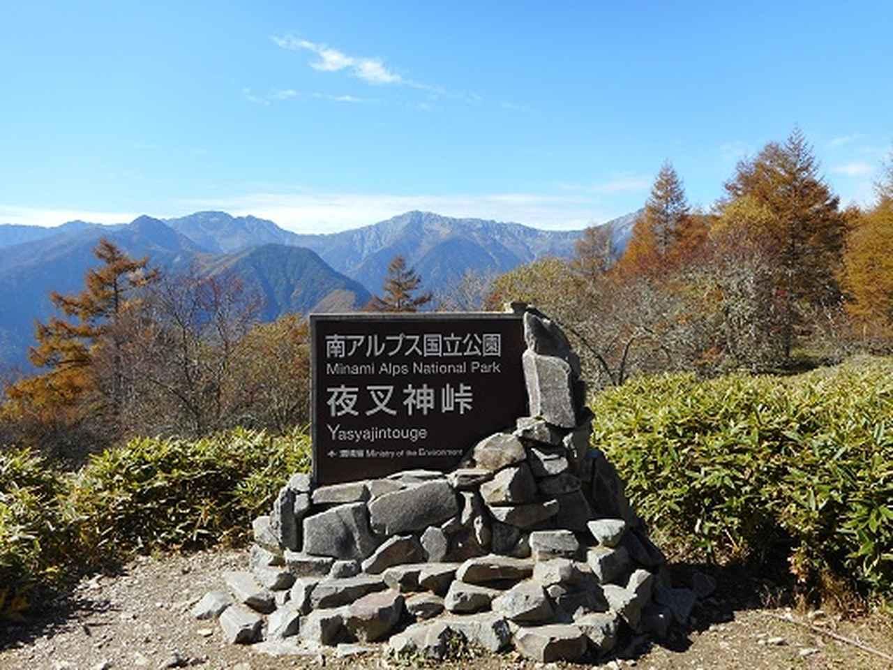 画像6: 【山旅会・登山ガイドこだわりツアー】岡田ガイドからの便り・夜叉神峠から高谷山ツアーの下見にいってまいりました!