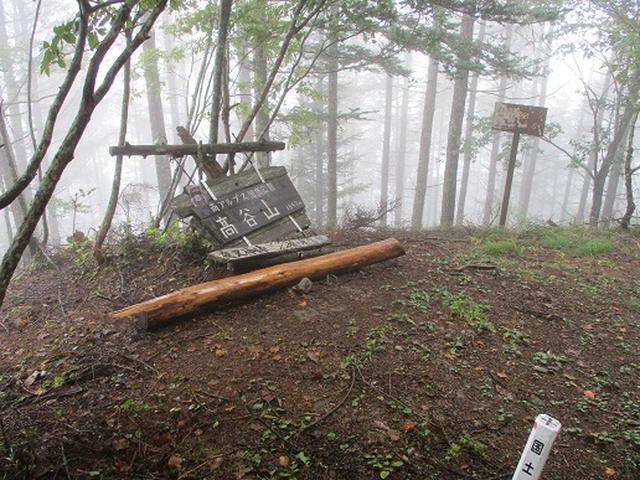 画像11: 【山旅会・登山ガイドこだわりツアー】岡田ガイドからの便り・夜叉神峠から高谷山ツアーの下見にいってまいりました!