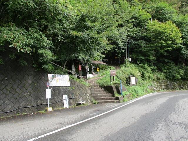 画像1: 【山旅会・登山ガイドこだわりツアー】岡田ガイドからの便り・夜叉神峠から高谷山ツアーの下見にいってまいりました!