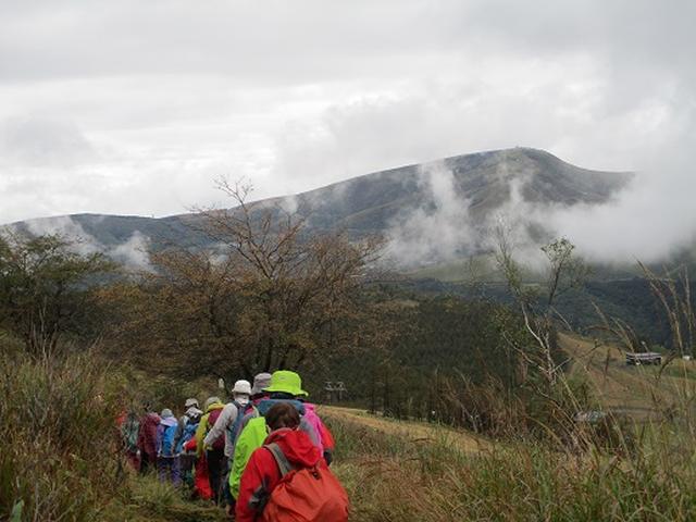 画像11: 【山旅会・登山ガイドこだわりツアー】添乗員からの便り・八子ヶ峰ツアーにいってまいりました!