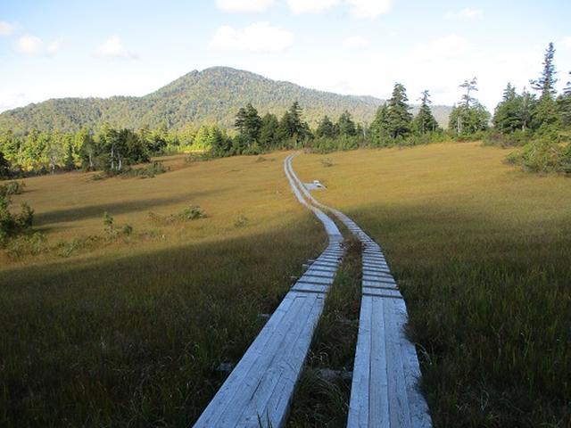 画像11: 【山旅会・登山ガイドこだわりツアー】岡田ガイドからの便り・尾瀬燧裏林道ツアーの下見にいってまいりました!