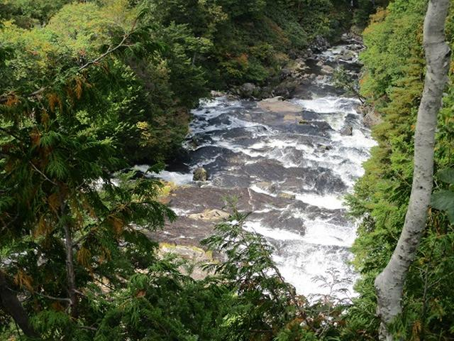 画像8: 【山旅会・登山ガイドこだわりツアー】岡田ガイドからの便り・尾瀬燧裏林道ツアーの下見にいってまいりました!