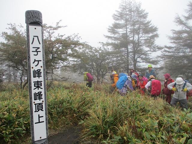画像5: 【山旅会・登山ガイドこだわりツアー】添乗員からの便り・八子ヶ峰ツアーにいってまいりました!
