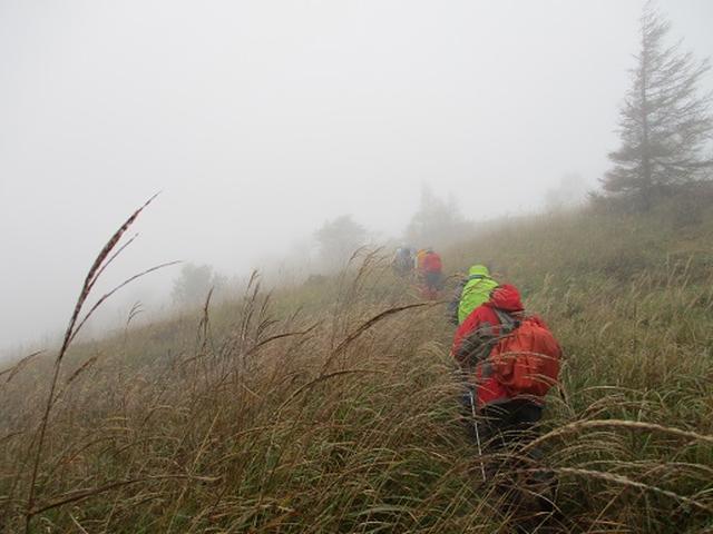 画像6: 【山旅会・登山ガイドこだわりツアー】添乗員からの便り・八子ヶ峰ツアーにいってまいりました!