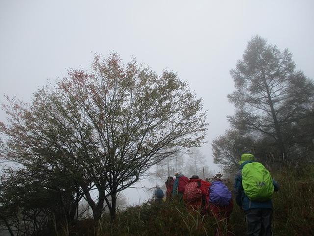 画像2: 【山旅会・登山ガイドこだわりツアー】添乗員からの便り・八子ヶ峰ツアーにいってまいりました!