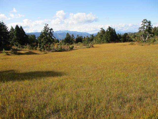 画像12: 【山旅会・登山ガイドこだわりツアー】岡田ガイドからの便り・尾瀬燧裏林道ツアーの下見にいってまいりました!