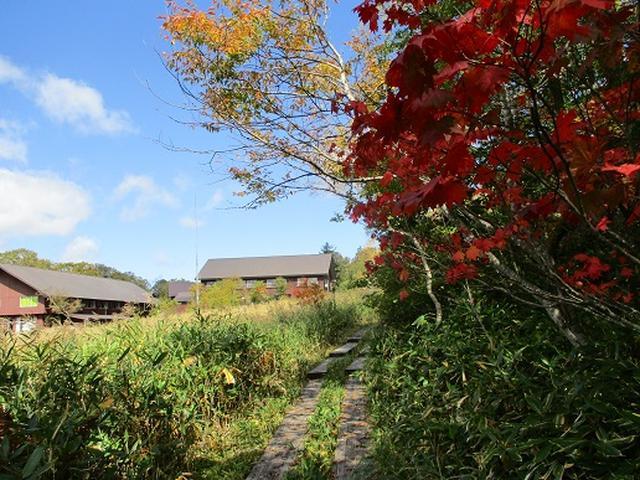 画像7: 【山旅会・登山ガイドこだわりツアー】岡田ガイドからの便り・尾瀬燧裏林道ツアーの下見にいってまいりました!