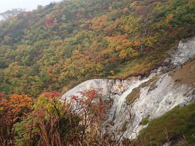 画像6: 【山旅会・登山ガイドこだわりツアー】添乗員からの便り・蔵王と栗駒山のハイキングにいってまいりました!