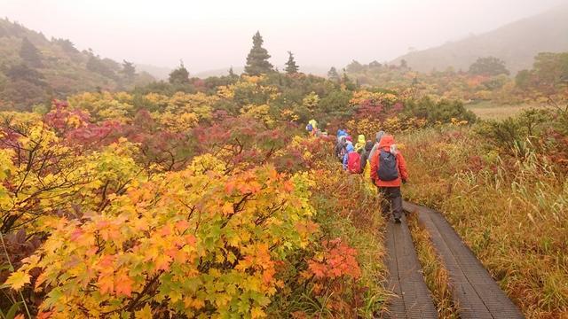 画像5: 【山旅会・登山ガイドこだわりツアー】添乗員からの便り・蔵王と栗駒山のハイキングにいってまいりました!
