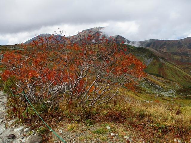 画像4: 【山旅会・登山ガイドこだわりツアー】岡田ガイドからの便り・立山雄山の下見にいってまいりました!