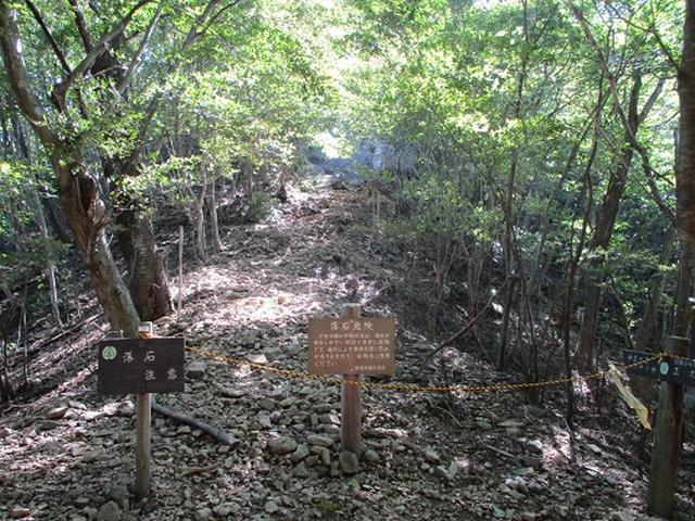 画像5: 【山旅会・登山ガイドこだわりツアー】岡田ガイドからの便り・伊豆ヶ岳の下見にいってまいりました!
