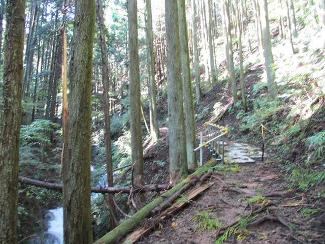 画像3: 【山旅会・登山ガイドこだわりツアー】岡田ガイドからの便り・伊豆ヶ岳の下見にいってまいりました!
