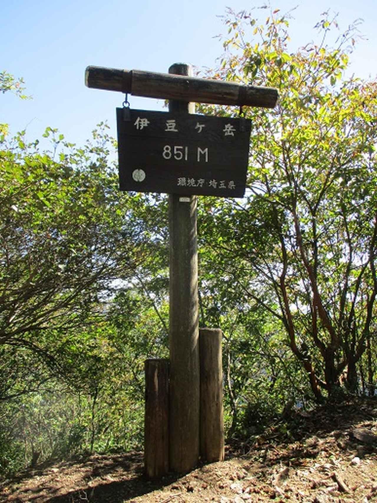 画像8: 【山旅会・登山ガイドこだわりツアー】岡田ガイドからの便り・伊豆ヶ岳の下見にいってまいりました!