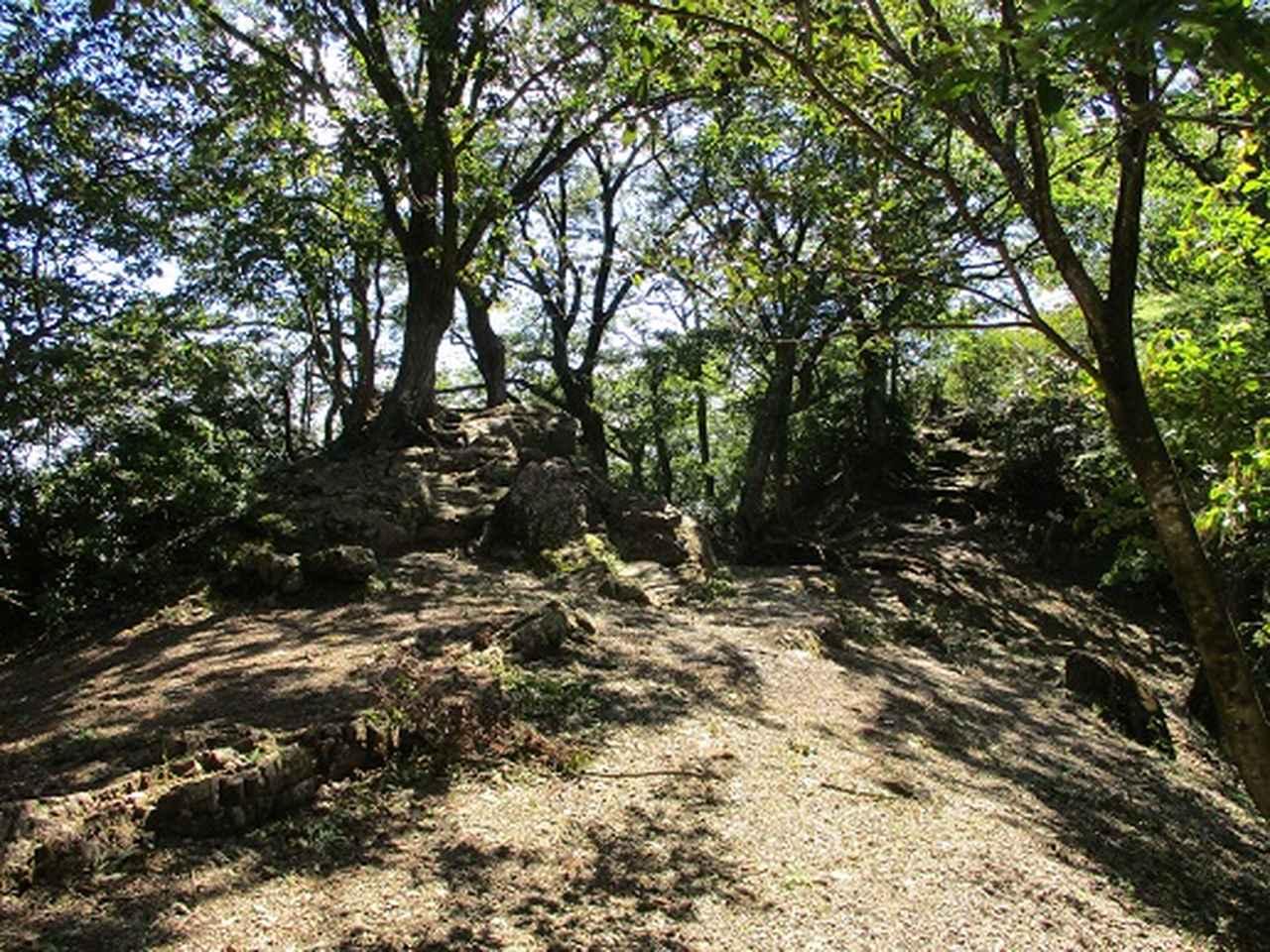 画像7: 【山旅会・登山ガイドこだわりツアー】岡田ガイドからの便り・伊豆ヶ岳の下見にいってまいりました!