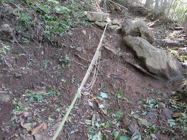 画像6: 【山旅会・登山ガイドこだわりツアー】岡田ガイドからの便り・伊豆ヶ岳の下見にいってまいりました!