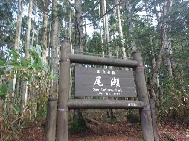 画像5: 【山旅会・登山ガイドこだわりツアー】添乗員からの便り・大清水から尾瀬沼